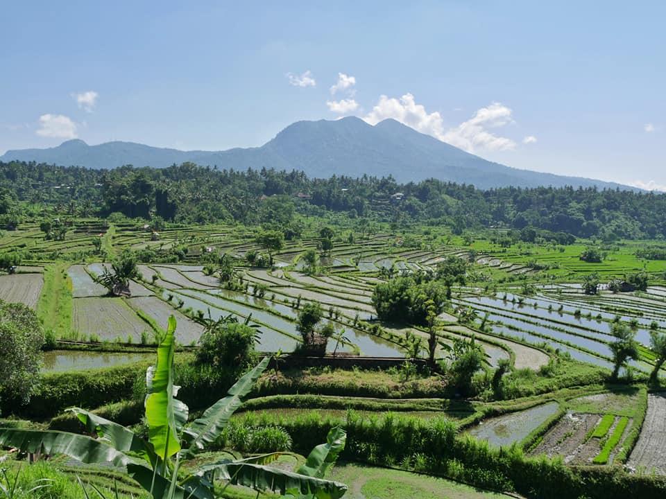 Tussenstop - prachtig uitzicht op de rijstvelden