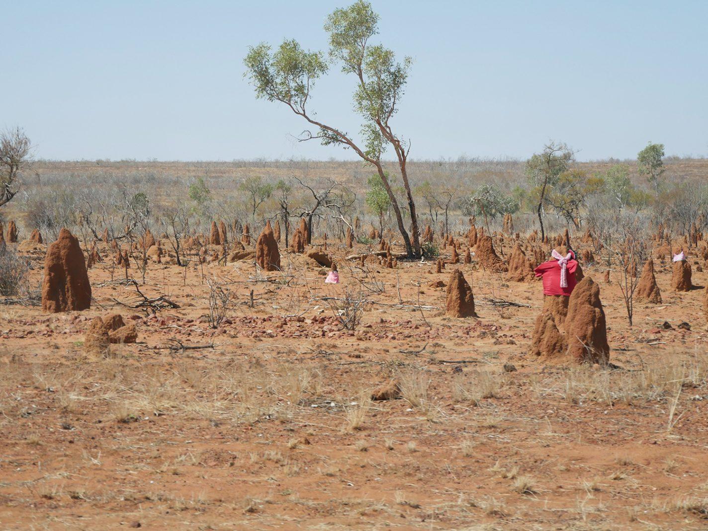 Veel termietenheuvels tijdens onze roadtrip zelfs met kleren aan