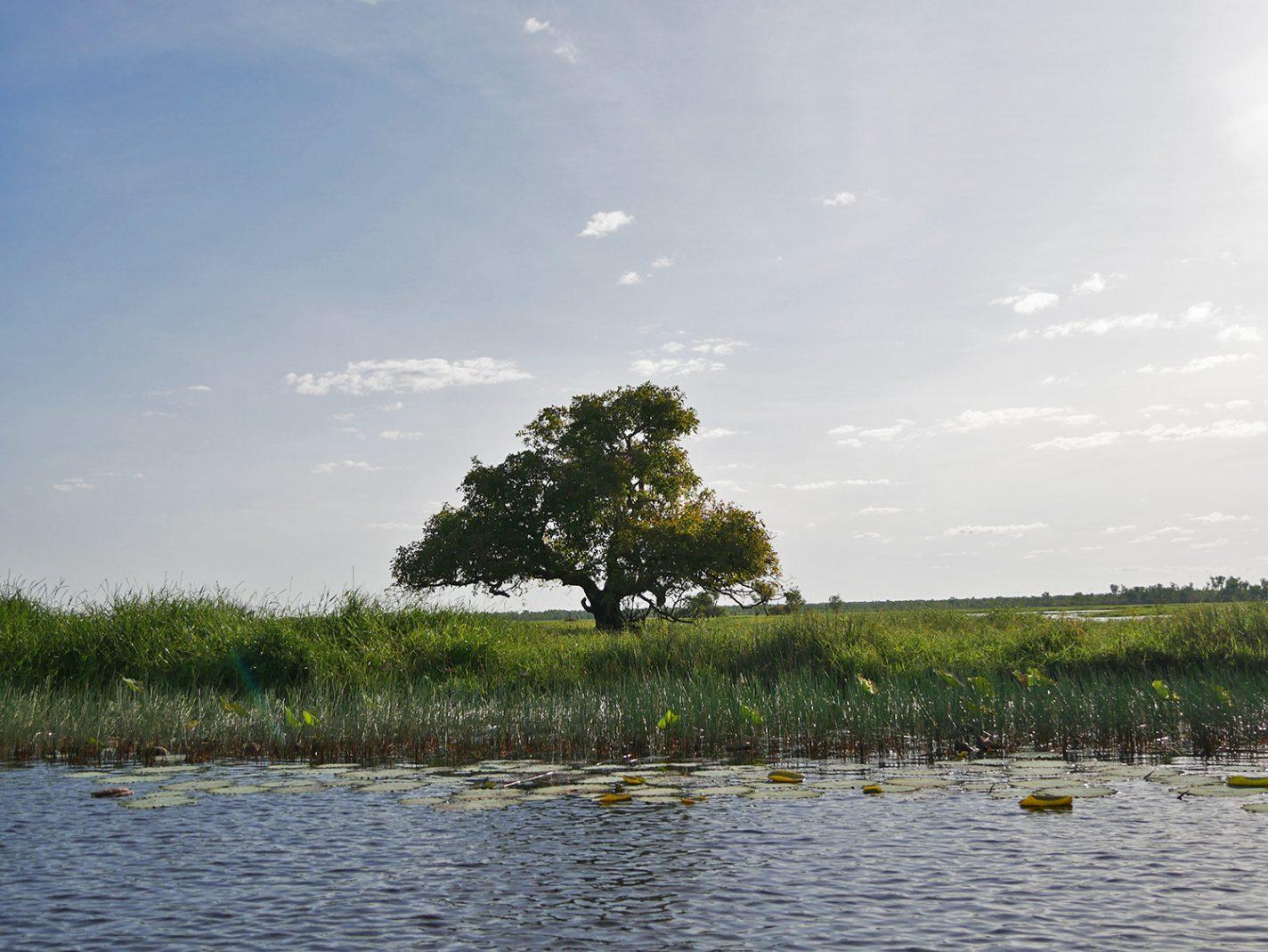 Prachtige landschappen en een laaghangend zonnetje - Corroboree Billabong Wetland Cruise